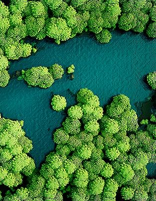 Cuarentena, ambiente y desarrollo sostenible